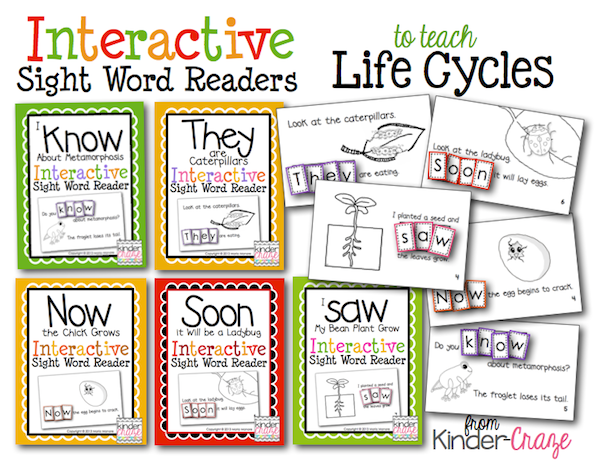 ife-cycle-interactive-sight-word-readers-from-kinder-craze
