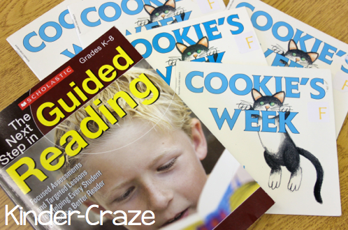 The Next Step in Guided Reading... supplies for Early Readers