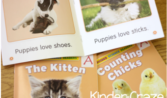 Summer Book Study Guided Reading {Chapter 3}