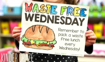 Waste Free Lunches in Celebration of America Recycles Day