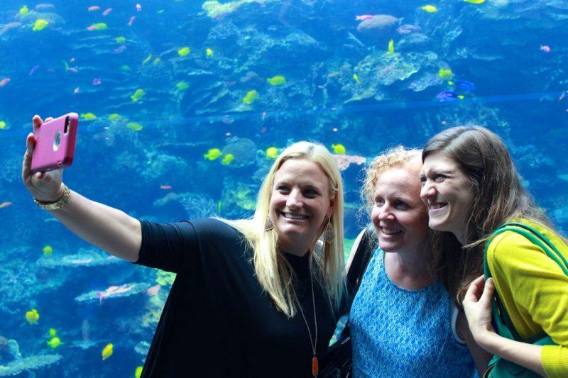 Astro Bright Minds summit 2015 selfie