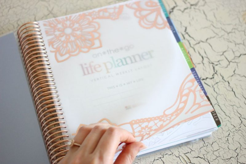 rose gold edition Erin Condren Life Planner