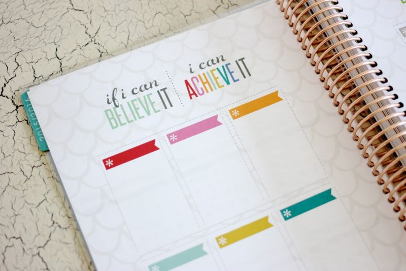 Erin Condren Life Planner goal setting pages