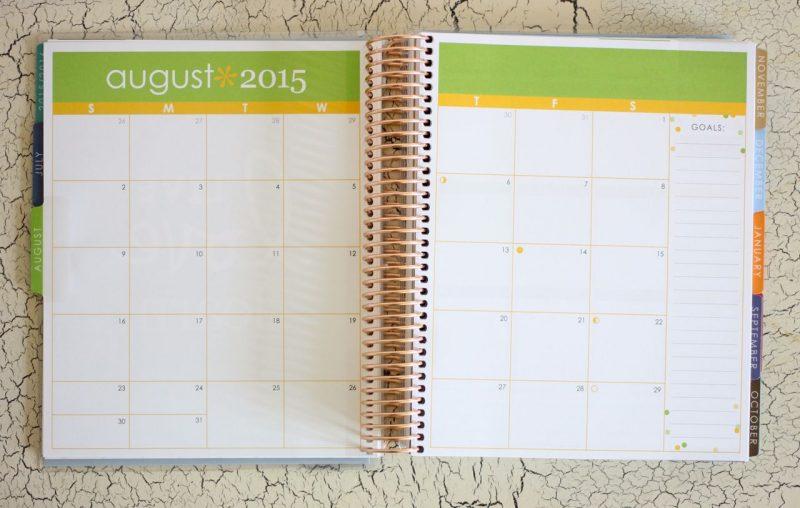 Erin Condren Life Planner 2-page calendar spread