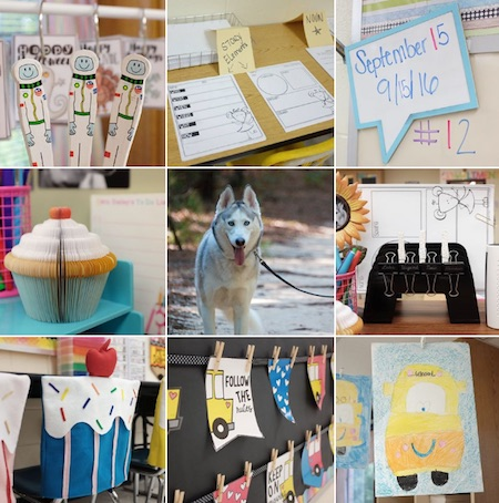 Husky Loving Teacher - 15 Must Follow Teacher Instagram accounts
